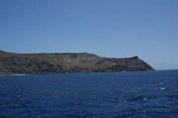 <p>Mais de 70 cientistas estiveram na maior expedição de sempre às ilhas Selvagens</p>