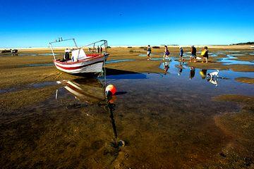 <p>Turistas aproveitam a passagem, que é má notícia para os pescadores</p>