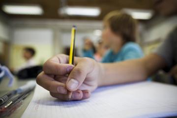 """""""Há escolas que vivem à sombra da bananeira"""", diz autora do estudo"""