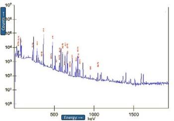 Picos que representam elementos radioactivos, medidos hoje pelo ITN