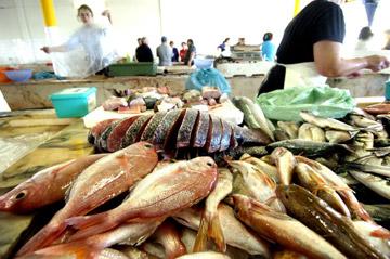 Em causa está o elevado nível de mercúrio que os grandes peixes podem conter