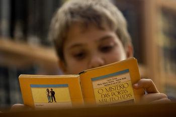 São sugeridos livros para todos os anos e níveis escolares, desde os seis meses até aos 16 anos