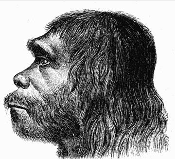 O Neandertal despareceu à medida que os humanos modernos entraram pela Europa