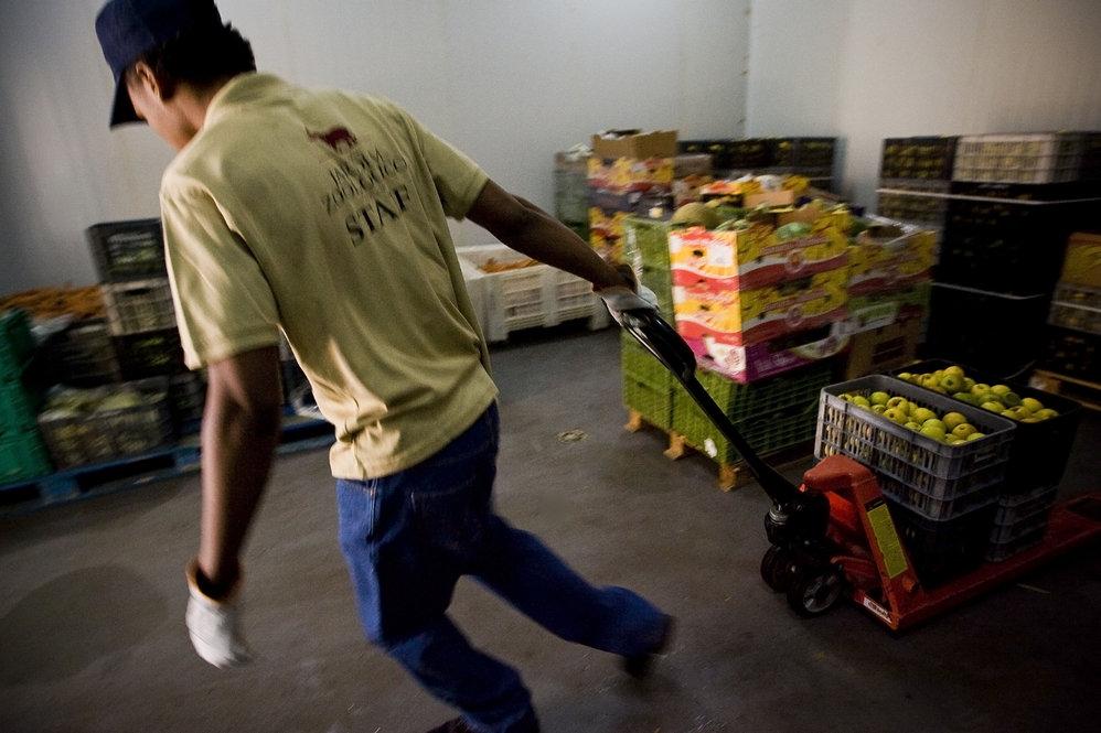 Trabalho no armazém de frutos e vegetais