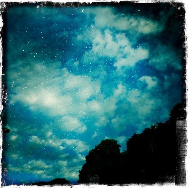 Quinta da Boavista - Chuva de estrelas | Foto: Alexandra Prado Coelho (iPhone)
