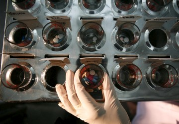 No estudo, os antirretrovirais reduziam em 96% a transmissão do HIV