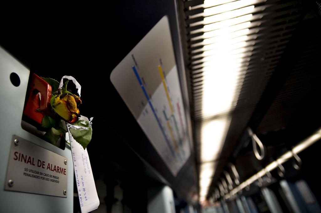 Durante um ano, José deixou uma flor todos os dias na última carruagem do metro em Santa Apolónia