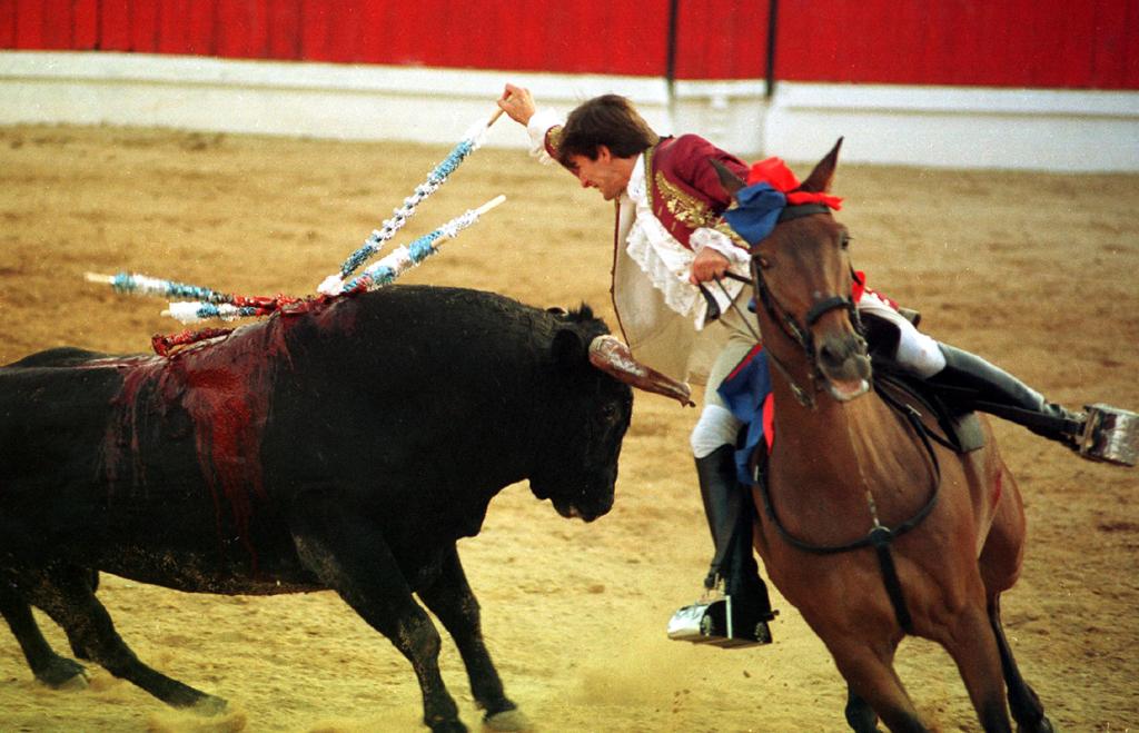 """O Bloco defende que a tourada pode interferir de forma negativa """"na formação da personalidade de crianças e adolescentes"""""""