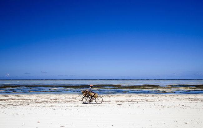 Praia de Bwejuu