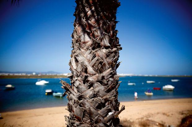 Ilha de Faro, que já foi ilha e agora é uma península