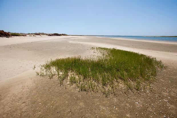 Ilha da Barreta, também conhecida como a Ilha Deserta