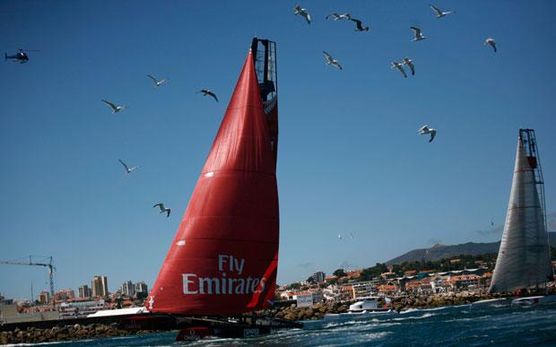 Cascais, 07.08.2011 | As gaivotas acompanham a Emirates Team da Nova Zelândia enquanto esta participa na prova da America's Cup que decorre em Cascais.