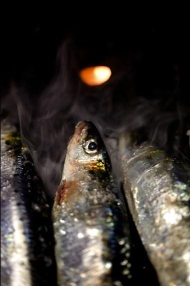 Com a geografia baralhada: sardinha assada