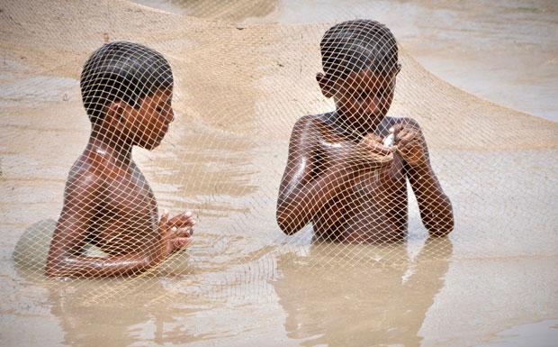 Paquistão, Larkana, 26.08.2011 | Sob a rede de pesca, os rapazes examinam um peixe que acabaram de apanhar.