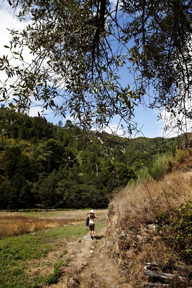 A partir da soalheira Fajão, é possível cruzar o concelho e caminhar por trilhos e antigas levadas