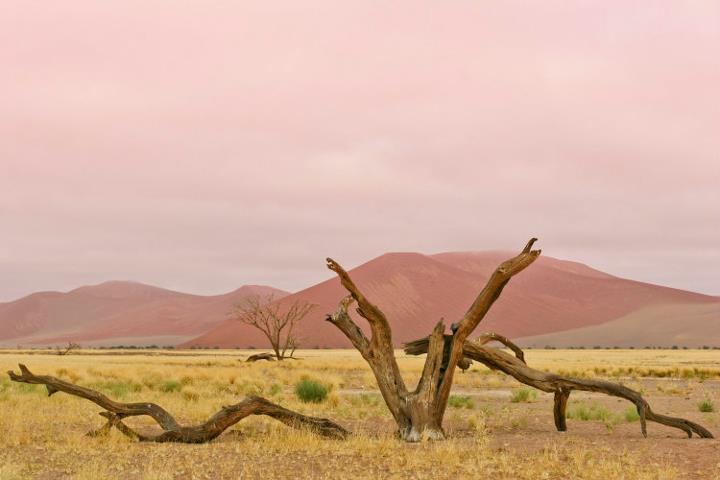 Sussuvlei, Namibia, Novembro 2006 - por Nuno Clemente