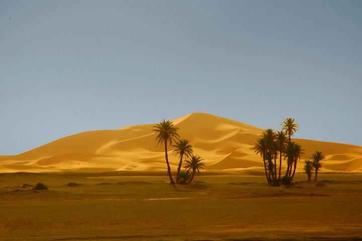 Dunas do Erg Chebbi, Sara, perto de Merzouga, Marrocos - por Emanuel Martins