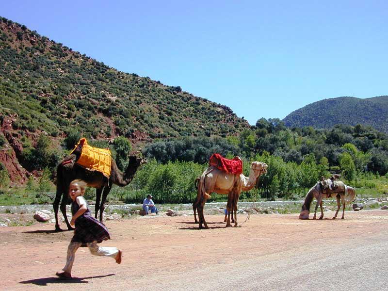 Marrocos, nos arredores de Marraquexe, em 2007 - por Ana Martinho  Tirada