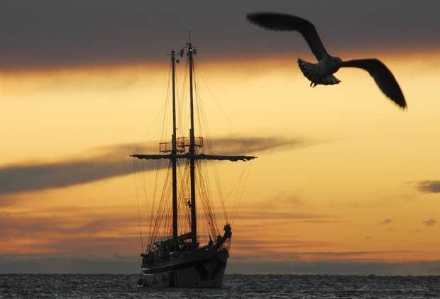 Um quadro eterno: um barco à vela a chegar ao pôr-do-sol a um porto, neste caso o de Trieste. Integrado na Barcolana, uma regata que aqui se realiza desde 1969 e que é uma das maiores do mundo com mais de dois mil participantes.