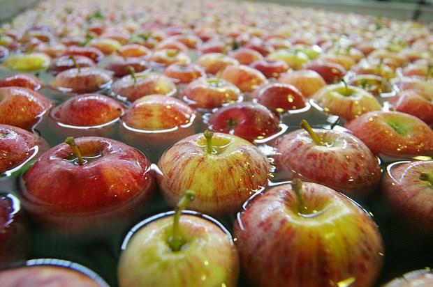 Protecção cardiovascular, Vai uma maçã