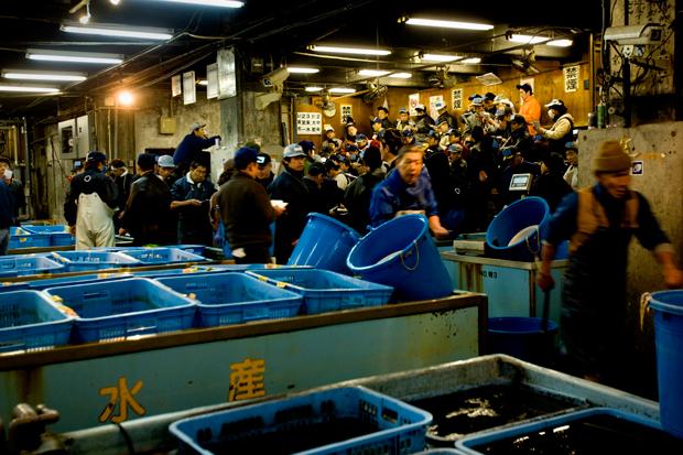 Uma das zonas de licitação do mercado de Tsukiji.