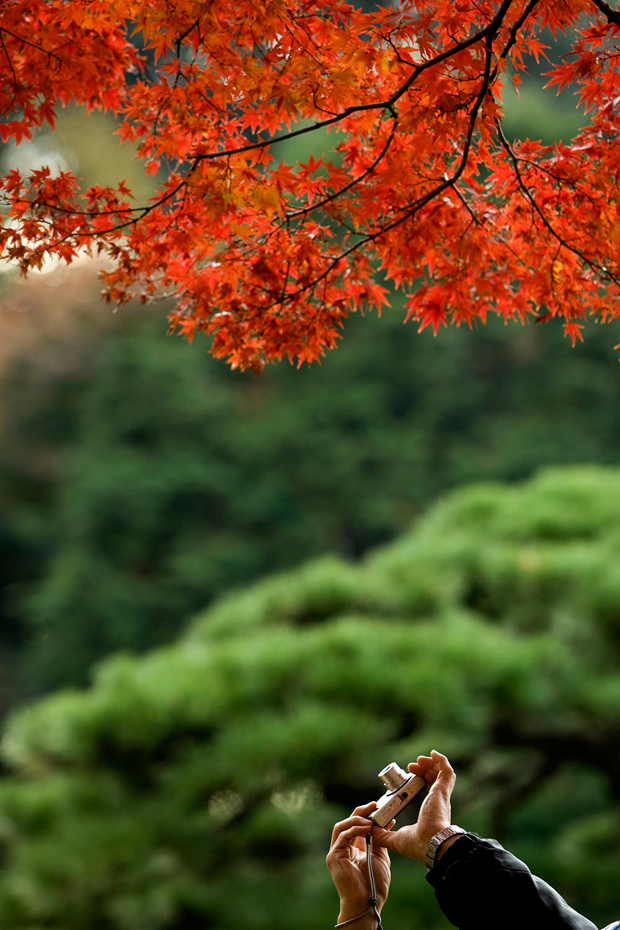 Outono em Tóquio.