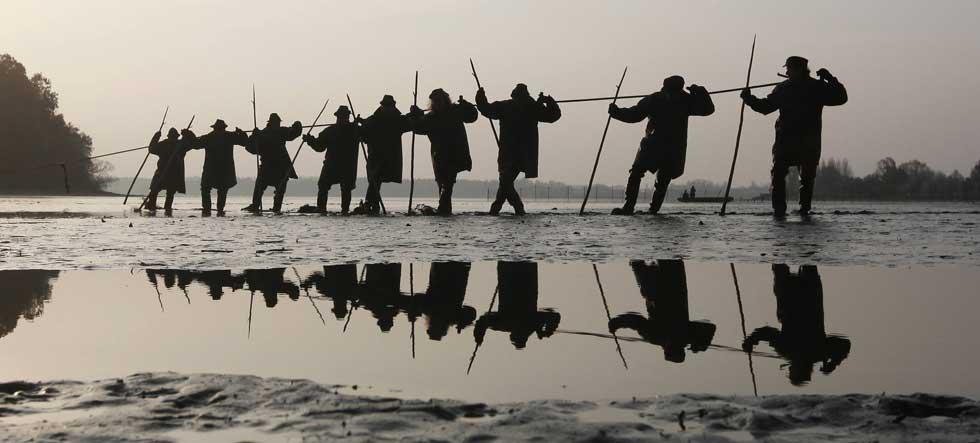 República Checa, 7.11.2011 | Pescadores puxam a sua rede num lago perto da cidade de Bosilec durante a pescaria da carpa, peixe que é obrigatório nas mesas de Natal dos checos.
