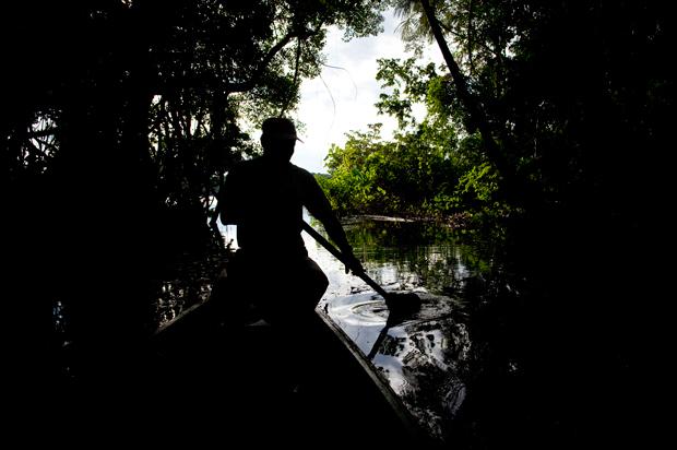 O rio Napo, o maior afluente do Amazonas, tem uma zona de águas negras, com elevado grau de taninos. Aqui as águas são mais ácidas, há menos nutrientes e menos mosquitos.