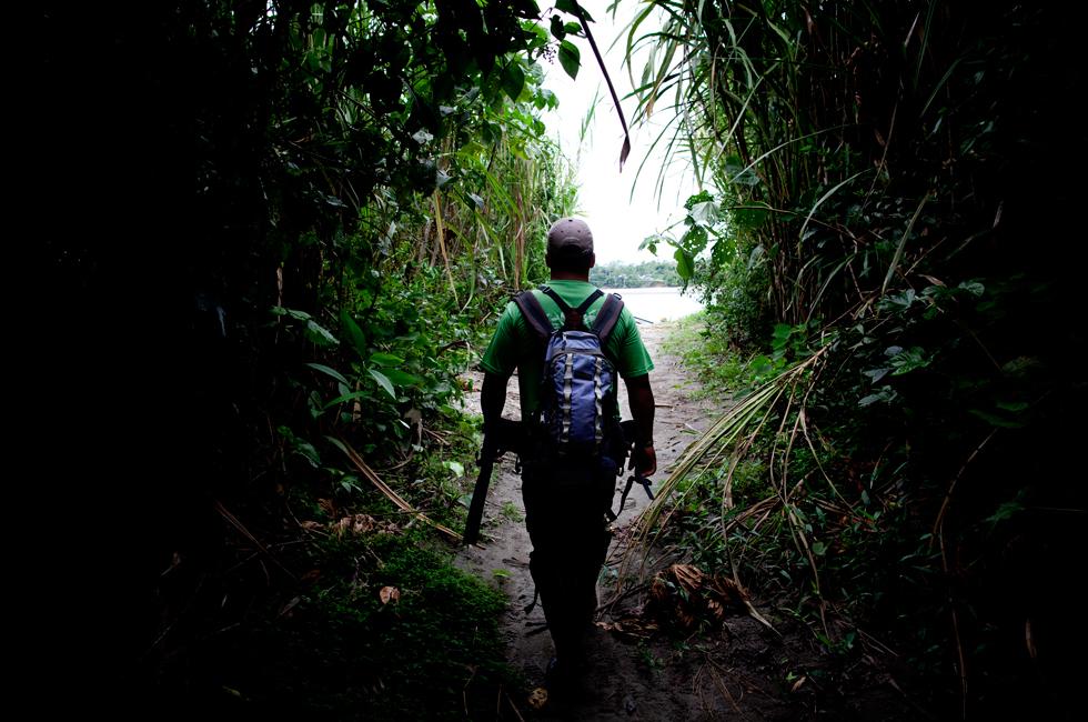 No fim de um trilho pela floresta, chega-se à beira do rio – e à luz. Quando se anda por entre as árvores, é muito provável que pouca luz chegue lá abaixo e se caminho à média luz.