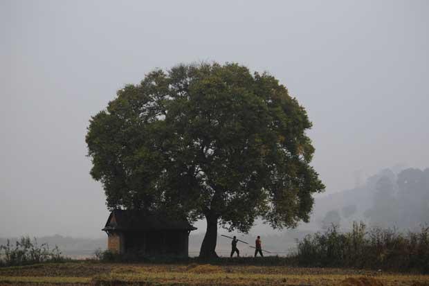 Nepal, 18.11.2011 | Na madrugada, agricultores a caminho dos campos (aldeia de Khokana, Lalitpur).