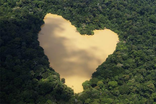 Amazónia. Um lago natural perto de Manaus.