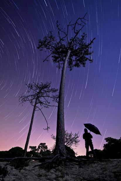 Rastos de estrelas como chuva caindo sobre um pequeno pinhal na Fonte da Telha, na noite das Perseidas em 13/08/2011 (00h14 a 01h23). 75 imagens alternadas cada uma de 25 segundos, totalizando integração de 31 minutos. São visíveis diversas constelações como Cepheus, Cassiopeia, Perseus, Andromeda, Pegasus e o planeta Júpiter.