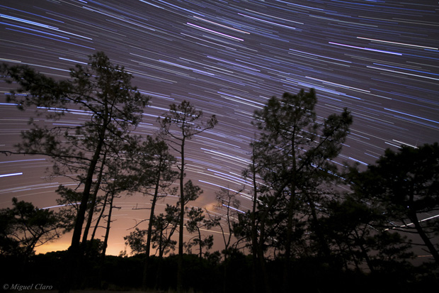 Imagem do rasto das estrelas na região sul do céu, na zona da Via Láctea. Imagem obtida num pinhal da Fonte da Telha, na noite das Perseidas. (uma das 100 melhores do ano segundo a