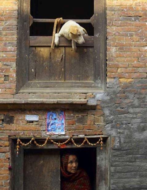 Um cão e a sua dona espreitam de casa. Na velha cidade de Bhaktapur.