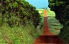 Açores no top 10 dos destinos 'Budget Travel' para 2012