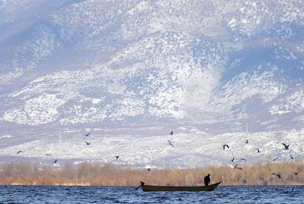 Albânia, 18.12.2011 | Um pescador no lago Shiroke, perto da cidade de Shkoder