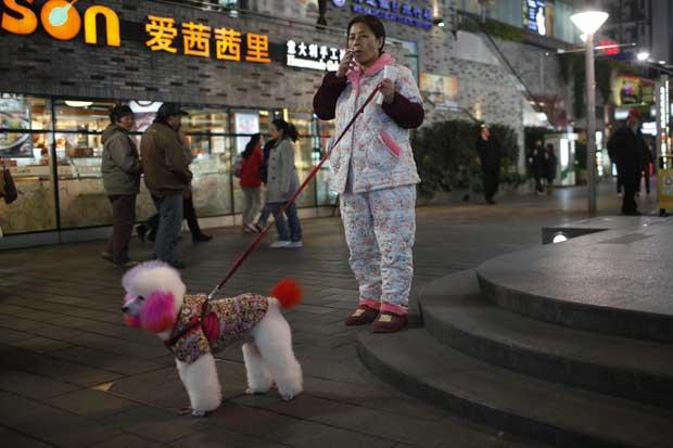China, 28.12.2011 | A passear o cão numa rua pedestre de Xangai