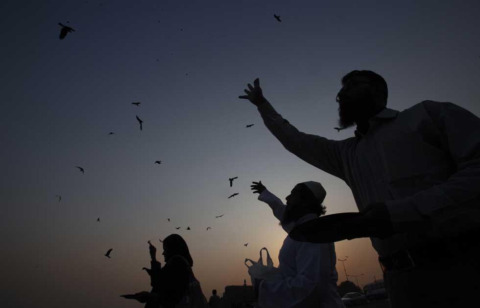 Paquistão, 30.12.2011 | A alimentar pássaros no final do ano: muitos acreditam que alimentá-los traz boa sorte. Em Karachi.