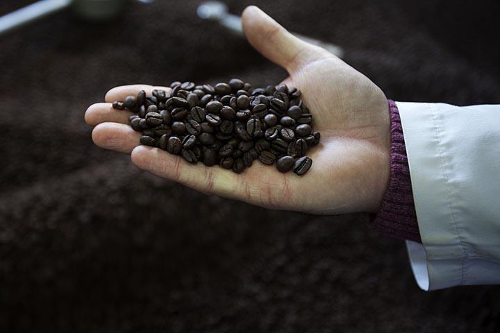 Fábrica de café Torrié. Em Rio Tinto