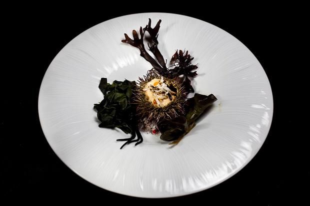 O prato de vieiras com ouriço do mar de Shaun Hergatt