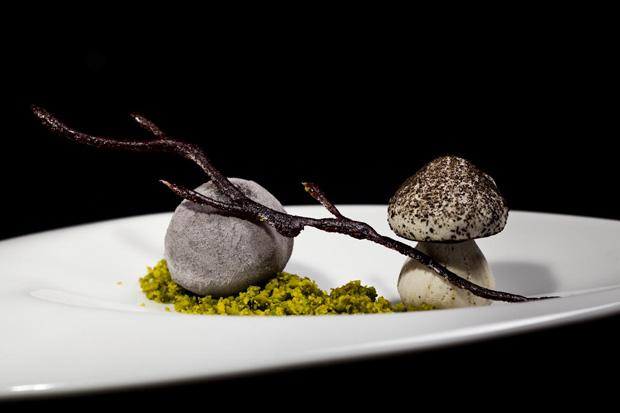 Rochas e cogumelos