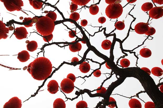 CHINA. Lanternas vermelhas a decorar uma árvore no parque de Dittan, Pequim