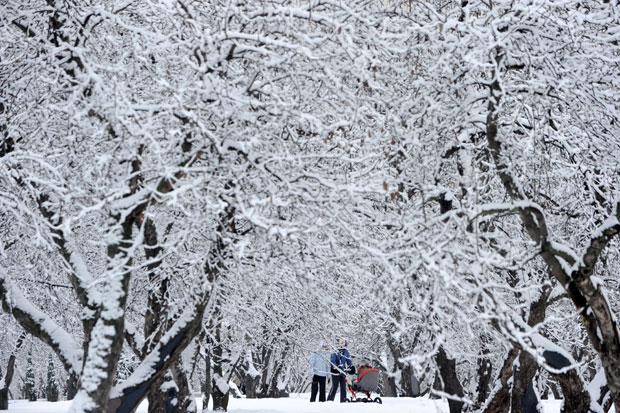RÚSSIA. 01.01.2012. Um casal caminha pela neve no parque do museu Kolomenskoye em Moscovo.