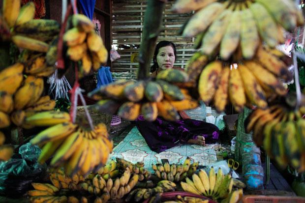 BIRMÂNIA/MYANMAR. 24.01.2012 | A vender fruta num Mercado de Naypyitaw