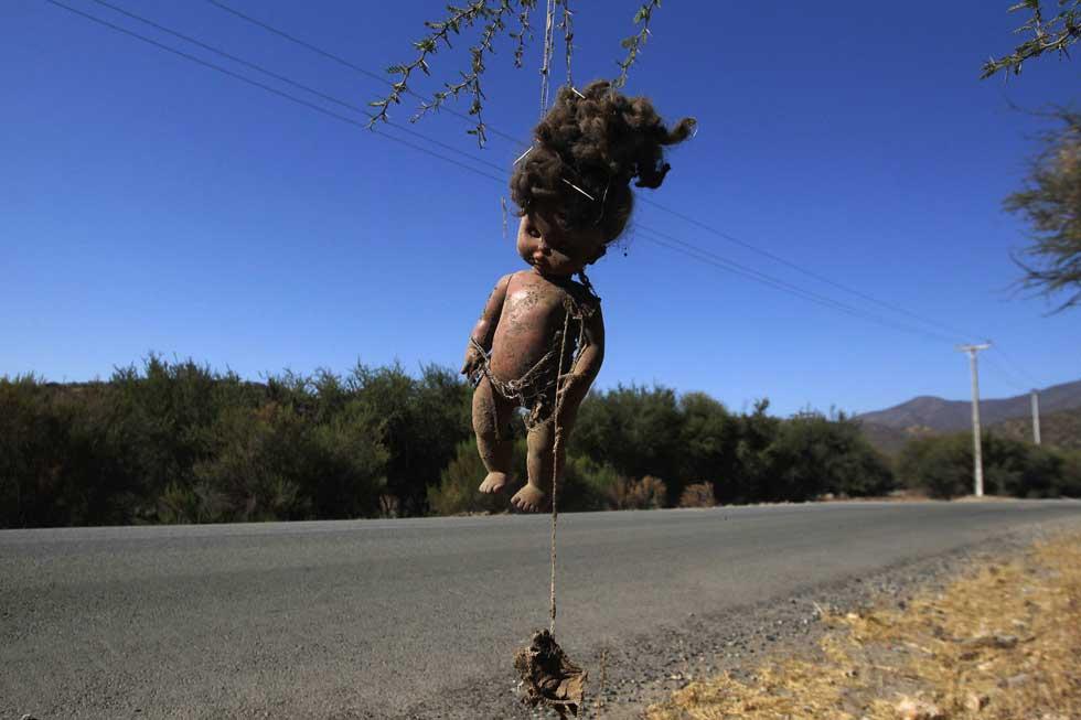 CHILE, 03.02.2012. Uma boneca presa a uma árvore, vista perto da reserva de Runge, 60km a norte de Santiago.