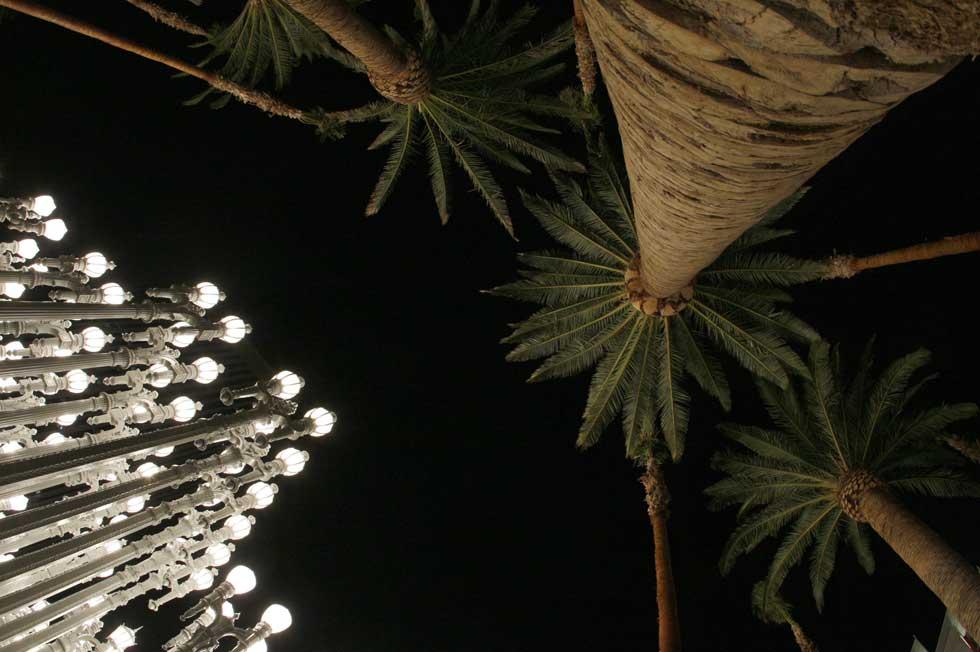 A noite de LA, palmeiras e luz: o contraste é conseguido durante a exibição de uma instalação artística de Chris Burden,