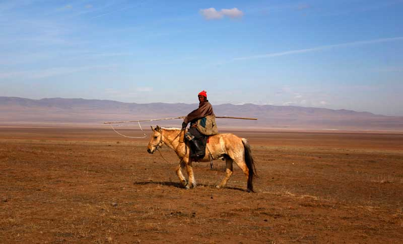 O cavalo pode ser o melhor amigo do mongol