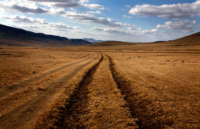Sinais da modernidade em paisagem eterna: marcas de pneus cortam a pradaria em direcção às montanhas