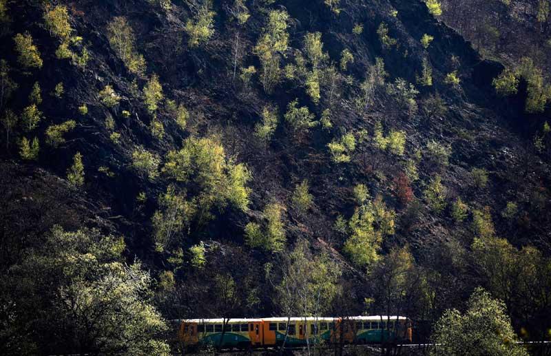 REPÚBLICA CHECA, 17.04.2012.  Um comboio de passageiros passa junto um bosque nos arredores de Praga