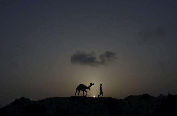 PAQUISTÃO, 11.05.2012. A guiar o camelo nos arredores de Carachi